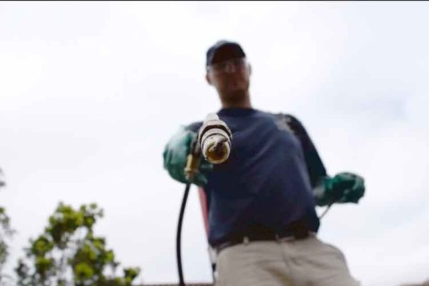 PEST CONTROL SPRAYING (with Video)