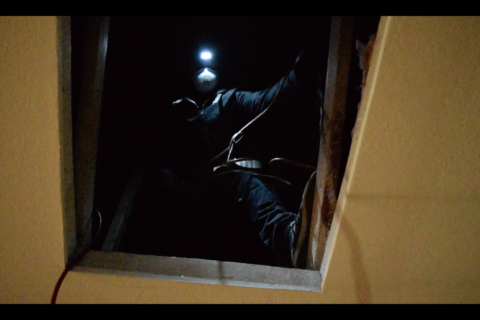 Attic Treatment (with Video)