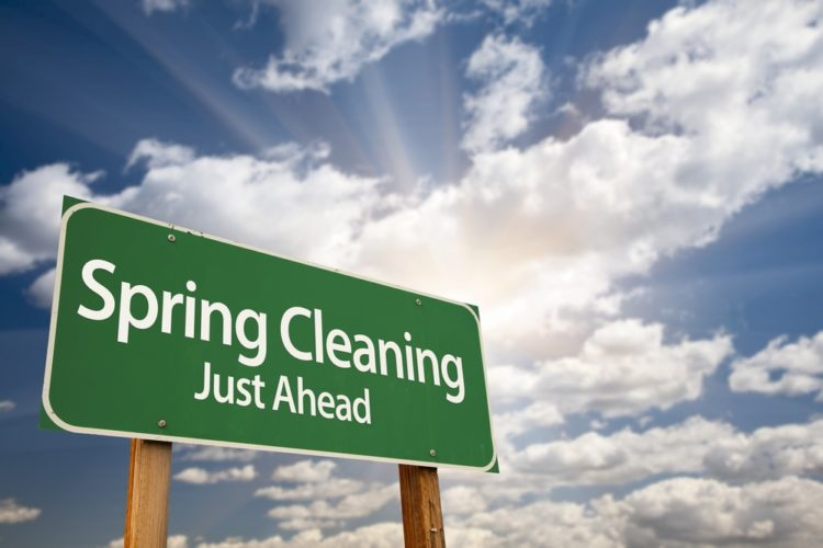 Spring Cleaning And Pests