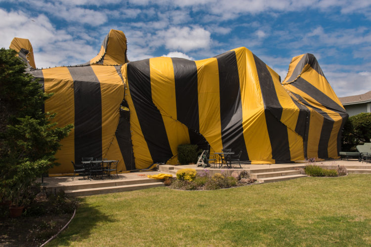 How to Prepare for Home Fumigation
