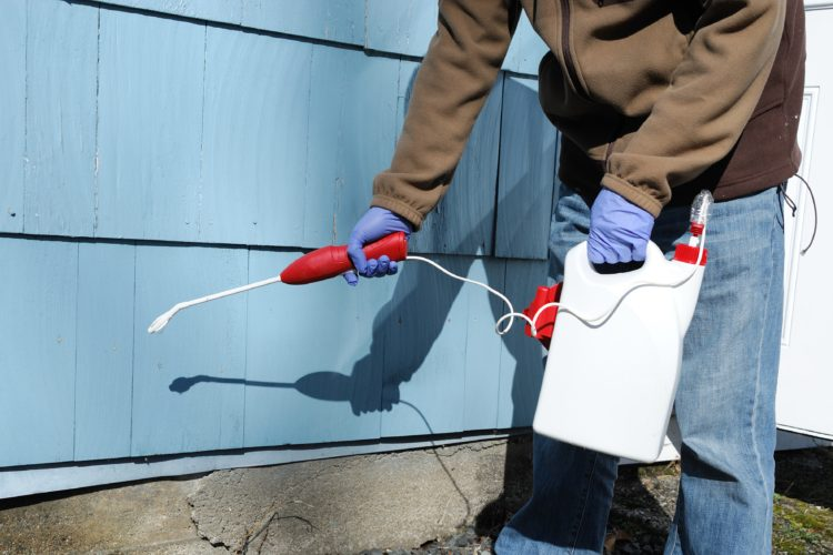 Exterior Protection Keeps Pests Out