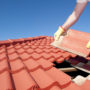 Has Your Roof Been Pest Proofed?