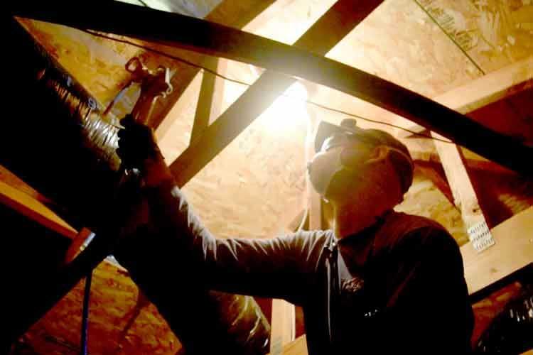 Carmel Valley Pest Control Termite Service